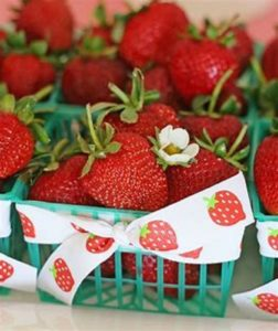 29th Annual Strawberry Festival @ Town of Stanardsville